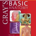 Gray's Basic Anatomy with STUDENT CONSULT Online Access