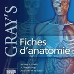 Gray's Fiches d'anatomie