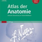 Atlas der Anatomie: Deutsche Übersetzung von Roland Mühlbauer, 5. Auflage