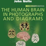 The Human Brain in Photographs and Diagrams, 4th Edition With STUDENT CONSULT Online Access
