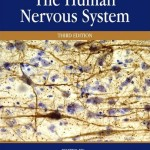 The Human Nervous System, 3rd Edition