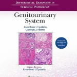 Differential Diagnoses in Surgical Pathology: Genitourinary System Retail PDF