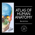 Atlas of Human Anatomy, 6th Edition