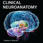Clinical Neuroanatomy Edition 27