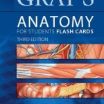 Gray's Anatomy for Students Flash Cards: with STUDENT CONSULT Online Access                     / Edition 3