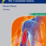 Color Atlas of Human Anatomy: Vol. 1: Locomotor System