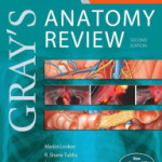 Gray's Anatomy Review: with STUDENT CONSULT Online Access, 2nd Edition Retail PDF