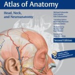Head, Neck, and Neuroanatomy (Thieme Atlas of Anatomy) 2nd Edition