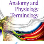 PROP – Anatomy and Physiology Terminology