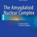 The Amygdaloid Nuclear Complex 2016 : Anatomic Study of the Human Amygdala