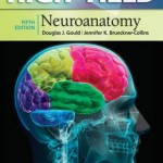 High-Yield Neuroanatomy, 5th Edition