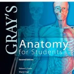 Gray's Anatomy for Students, 2nd Edition with STUDENT CONSULT Access