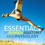 Essentials of Human Anatomy & Physiology, 10th Edition