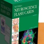 Netter's Neuroscience Flash Cards, 2nd Edition