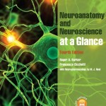 Neuroanatomy and Neuroscience at a Glance, 4th Edition