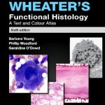 Wheater's Functional Histology: A Text and Colour Atlas, 6th Edition (With STUDENT CONSULT Online Access)