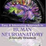 Easy and Interesting Approach to Human Neuroanatomy (Clinically Oriented)