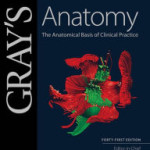 Gray's Anatomy: The Anatomical Basis of Clinical Practice, 41st Edition Retail PDF