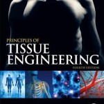 Principles of Tissue Engineering 4th Edition