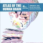 Atlas of the Human Brain, 4th Edition