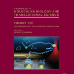 Nanotechnology Tools for the Study of RNA