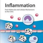 Inflammation : From Molecular and Cellular Mechanisms to the Clinic 4 Volume Set