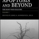 Apoptosis and Beyond : The Many Ways Cells Die 2 Volume Set